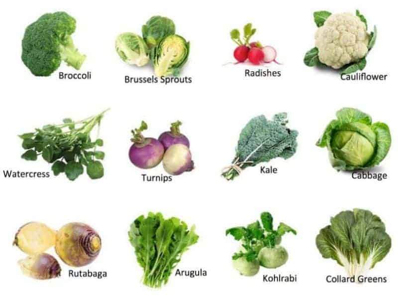 Intro to Cruciferous Vegetables